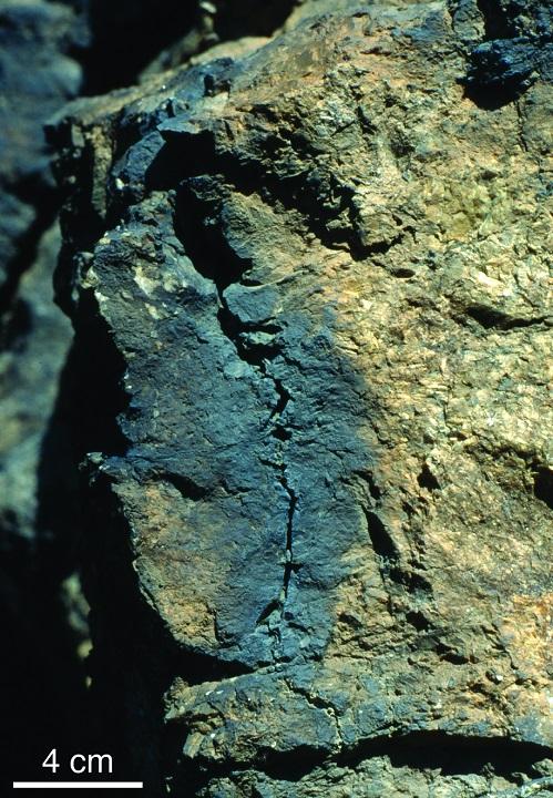 ตัวอย่างหินที่เกิด Shock lamella ข่าวโลกและธรณีวิทยา