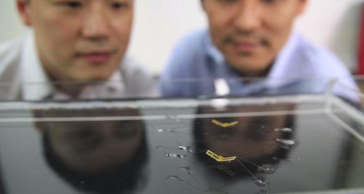 นักวิจัยกับหุ่นยนต์จิงโจ้น้ำ ข่าวฟิสิกส์