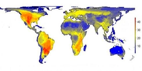 หากโลกนี้ไม่มีมนุษย์จะเป็นอย่างไร ข่าวชีววิทยา ข่าวโลกและธรณีวิทยา