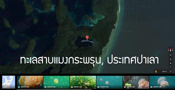 ทะเลสาบแมงกระพรุนประเทศปาเลา