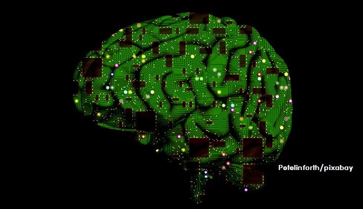 สมองเรามีความจุกี่ไบต์