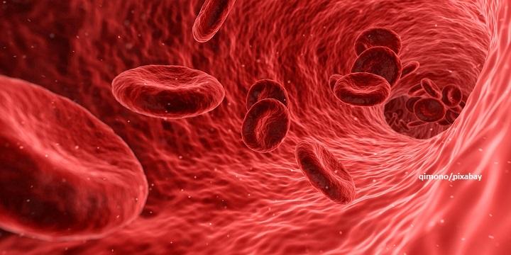 เซลล์เม็ดเลือดแดง