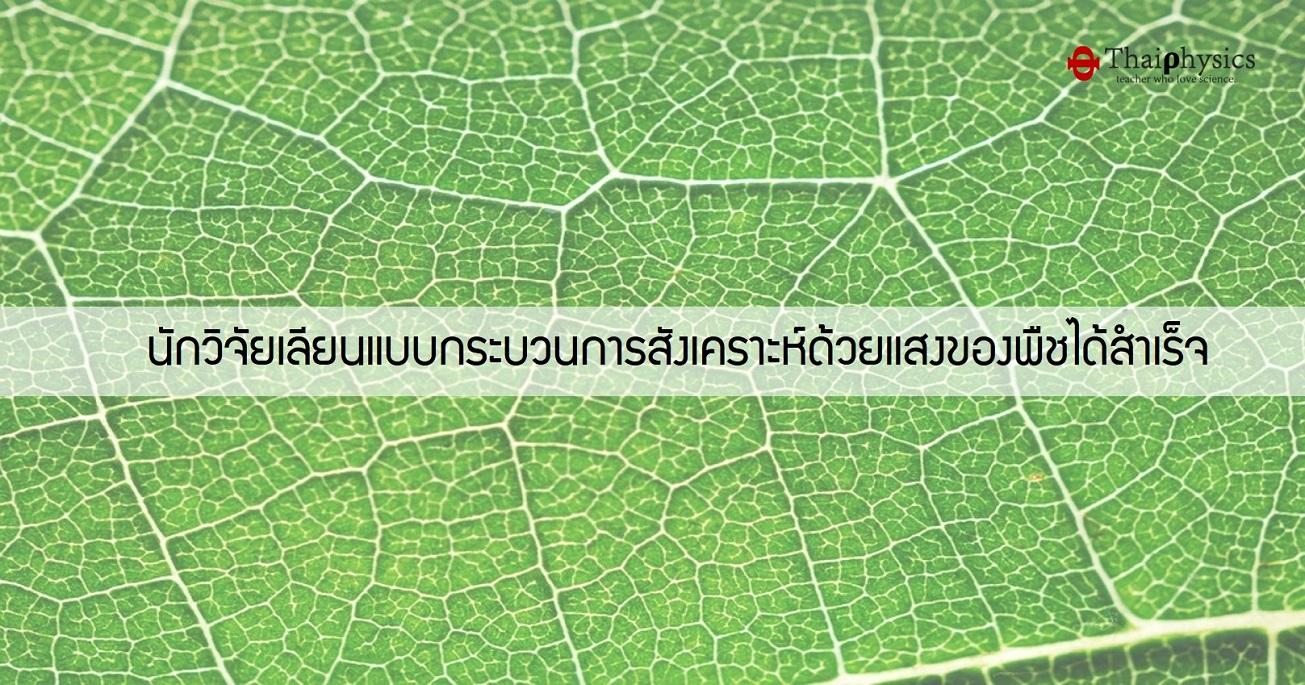 นักวิจัยเลียนแบบกระบวนการสังเคราะห์ด้วยแสงของพืช