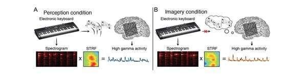 เกิดอะไรขึ้นกับสมองขณะฟังเพลง