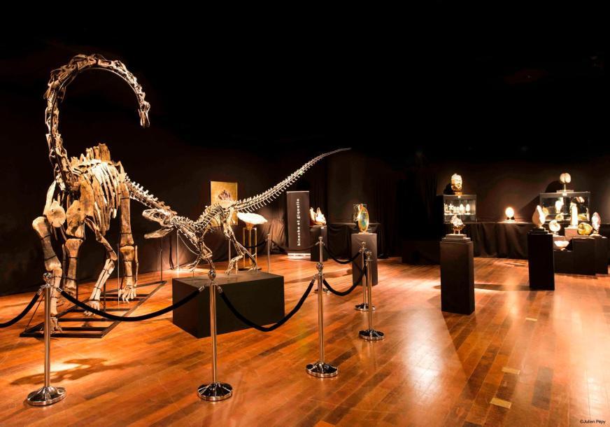 การประมูลโครงกระดูกไดโนเสาร์ที่ Drouot