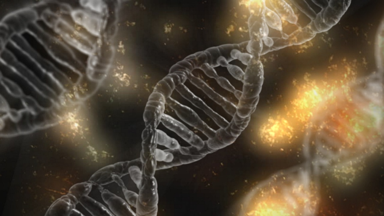 เกลียว DNA