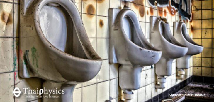 เชื้อ e coli ในห้องน้ำดื้อยามากกว่าพบในไก่เสียอีก