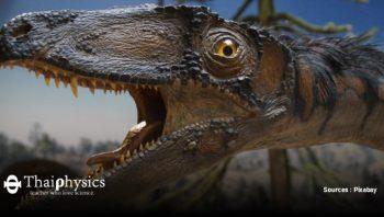 เคลียร์ประเด็นไดโนเสาร์เป็นสัตว์เลือดอุ่นหรือเลือดเย็น